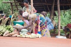 El hacer compras para los productos alimenticios Foto de archivo