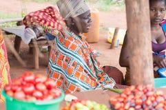 El hacer compras para los productos alimenticios Imagen de archivo libre de regalías