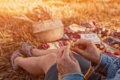 El hacer punto de la mujer joven fotografía de archivo libre de regalías