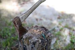 El hacha se apuñala en el tocón Foto de archivo libre de regalías