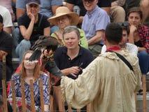 El halconero medieval 1 del festival 2016 Fotografía de archivo libre de regalías