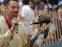 El halconero medieval 18 del festival 2016 Foto de archivo libre de regalías