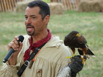El halconero medieval 22 del festival 2016 Fotografía de archivo