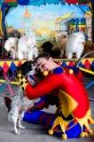 El Harlequin abraza el pequeño perro fotografía de archivo