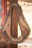 El harness viejo del caballo Foto de archivo