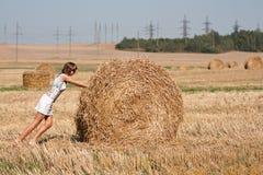 El haystack redondo se está moviendo Imagen de archivo libre de regalías