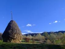 El heno Imagen de archivo