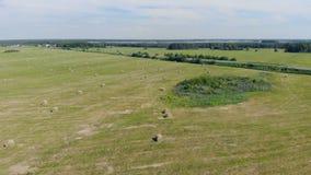 El heno cosechado está en un campo, visión superior metrajes