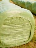 El heno embala el aire libre izquierdo para la fermentación Fotografía de archivo
