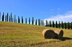 El heno rueda en Toscana, Italia imagen de archivo libre de regalías