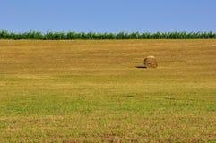 El heno rueda en Toscana, Italia fotos de archivo