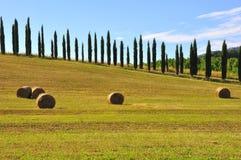 El heno rueda en Toscana, Italia imágenes de archivo libres de regalías
