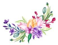 El hermosos de los tulipanes y de las hierbas de la flor florecen aguazo de la acuarela de la composición del ramo del arreglo de libre illustration