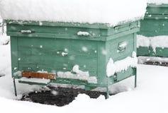 El hibernar de la colmena de la abeja Imagenes de archivo