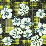 El hibisco florece el papel pintado Fotografía de archivo libre de regalías