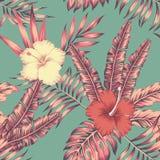 El hibisco sale color del vintage del modelo inconsútil tropical Fotos de archivo