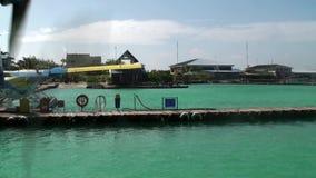 el hidroavión Amarillo-azul coloca el embarcadero cercano en el océano metrajes