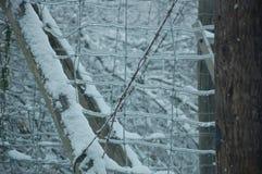 El hielo cubrió la cerca Imagen de archivo