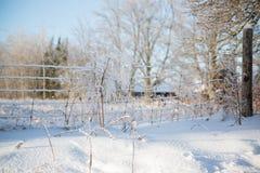 El hielo cubrió la cerca de alambre Imagenes de archivo