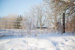 El hielo cubrió la cerca de alambre Sunny Winter Day Fotografía de archivo libre de regalías