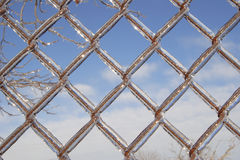 El hielo cubrió la cerca de la conexión de cadena Fotos de archivo