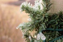 El hielo cubrió luces de la Navidad en la guirnalda verde fotos de archivo libres de regalías