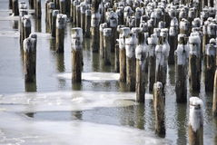 El hielo cubrió el río Hudson, New York City Foto de archivo libre de regalías