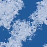 El hielo florece la pantalla del ejemplo Fotografía de archivo libre de regalías