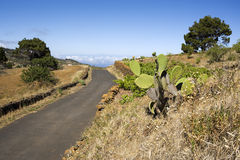 El Hiero, rural road above clo Royalty Free Stock Photo