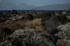 El Hierro Island - Picture 8 royalty free stock image