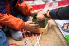 El hijo que aprende hacer que Chungkin se apelmaza por las manos con su primer del padre, torta de Chungkin es el vietnamita trad Fotos de archivo