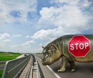 El hipopótamo del bebé, paso es cerrado Imagen de archivo