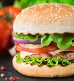 El hogar hizo la hamburguesa Foto de archivo libre de regalías