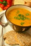 El hogar hizo la sopa Imagen de archivo libre de regalías