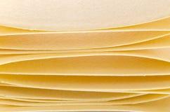El hogar hizo las hojas del lasagne de las pastas del huevo Imágenes de archivo libres de regalías