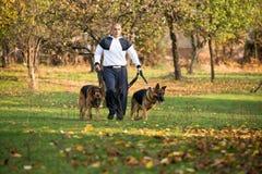 El hombre adulto que camina al aire libre con el suyo persigue al pastor alemán Foto de archivo