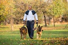 El hombre adulto que camina al aire libre con el suyo persigue al pastor alemán Imagenes de archivo