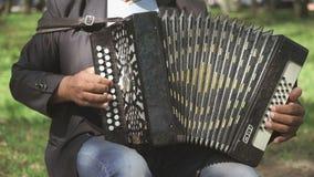 El hombre adulto que se sienta en una silla juega el acordeón metrajes