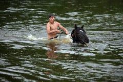 El hombre baña el caballo en el río Imagen de archivo