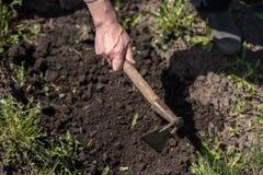 El hombre cava la tierra con una azada Fotografía de archivo libre de regalías