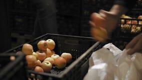 El hombre compra manzanas en la base de la fruta almacen de metraje de vídeo