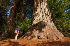 El hombre con la bandera de los E.E.U.U. en hombros se coloca cerca de árbol grande Foto de archivo libre de regalías