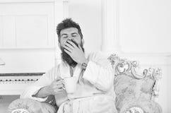 El hombre con la barba y el bigote bosteza mientras que se sienta en la butaca de lujo pasada de moda El hombre soñoliento en alb imagen de archivo libre de regalías