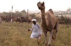 El hombre con su camello Imagen de archivo libre de regalías