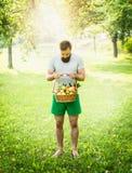 El hombre con una barba y está sosteniendo una cesta de manzanas en el fondo del fondo solar Fotografía de archivo libre de regalías