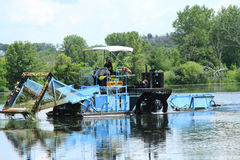 El hombre conduce una máquina segador de la vegetación del lago Fotografía de archivo libre de regalías