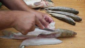 El hombre cortó los pescados