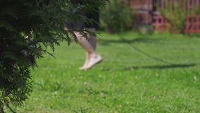 El hombre corta descalzo el cortacésped de la hierba almacen de video