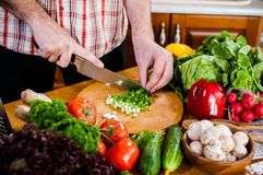 El hombre corta verduras frescas de la primavera imagen de archivo