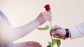 El hombre da a una mujer a una Rose Foto de archivo libre de regalías